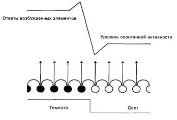 Основы психофизиологии: Учебник / Отв ред. Ю. И. Александров.  М.