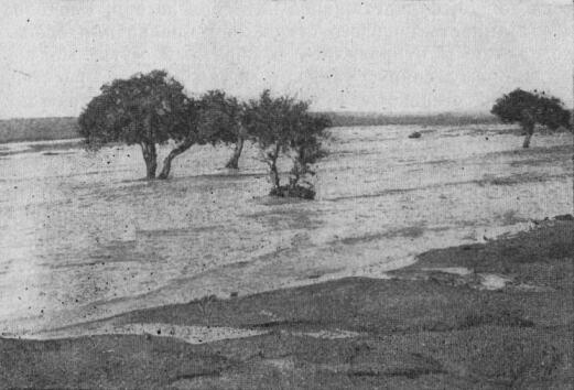 """Хара-Нур имеет бессточный  """"отросток """" в виде оз.  Дурген-Нур, расположенного юго-восточнее своего собрата."""