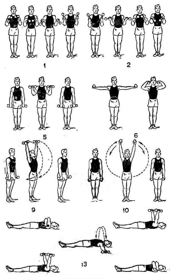 Рис.3 Упражнения с гантелями