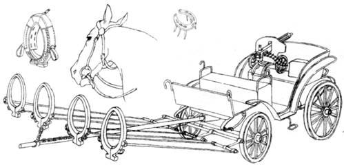 обученных лошадей работа с