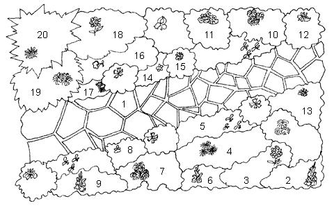 План миксбордера на участке: 1 - дорожка из природного камня; 2 - гладиолусы белые; 3 - флоксы розовые; 4 - астры...