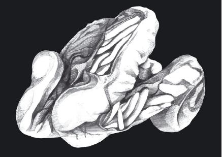 михаил ингерлейб избавление от паразитов