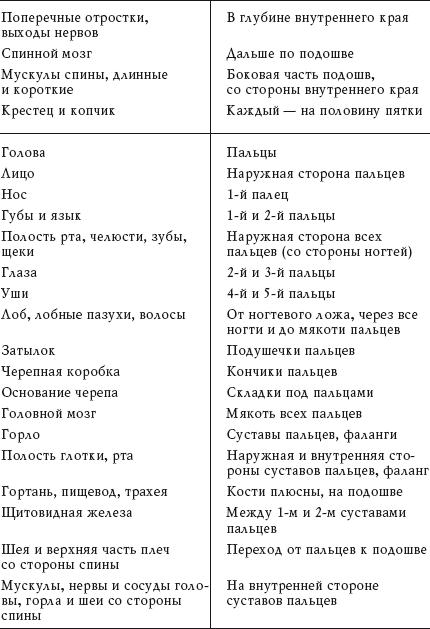 Таблица тонкая и толстая кишки