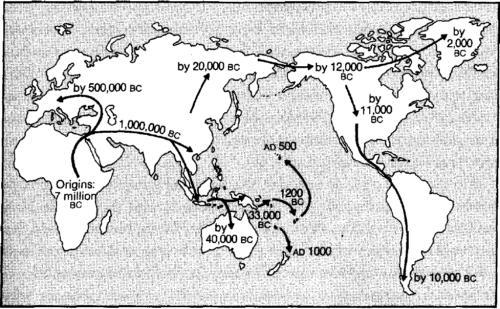 карта появления производства еды
