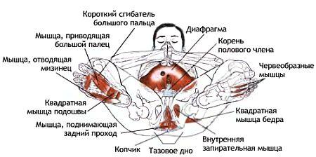 trahnul-v-chulkah-smotret