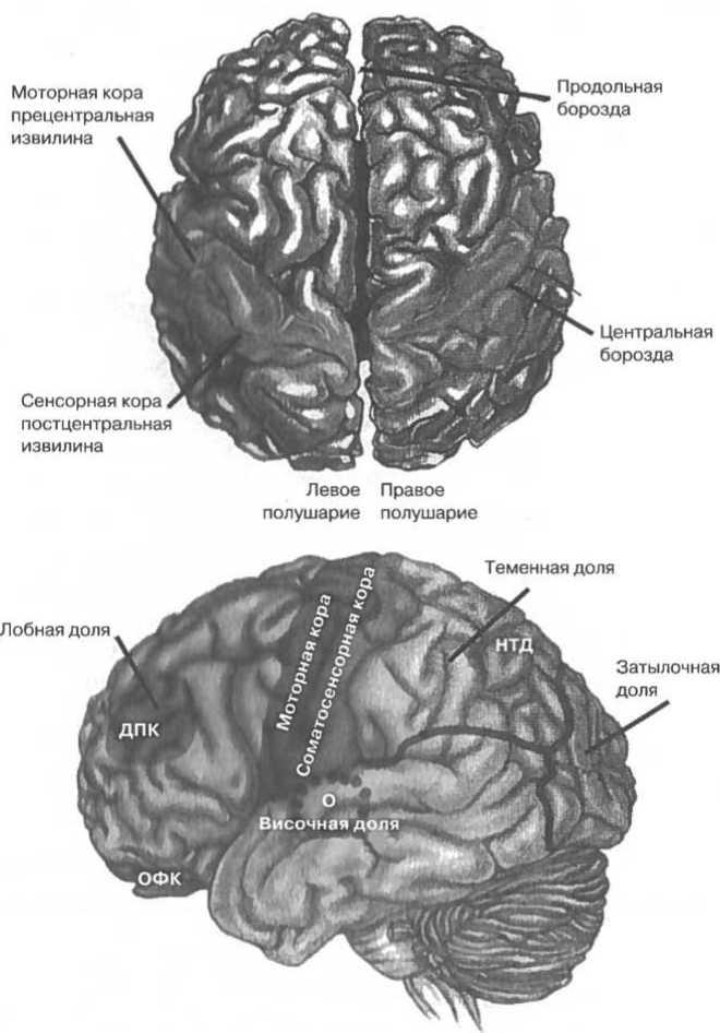 Верхний рисунок показывает два