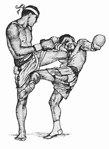 Если верить легенде. тайский бокс. или муай тай появился две тысячи лет назад.  Однако стоит отметить что до сих пор...
