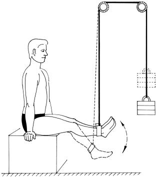 Йога для начинающих при болях в спине