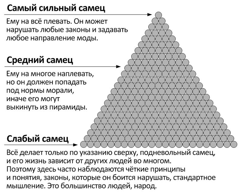 http://lib.rus.ec/i/55/187455/pic_2.png