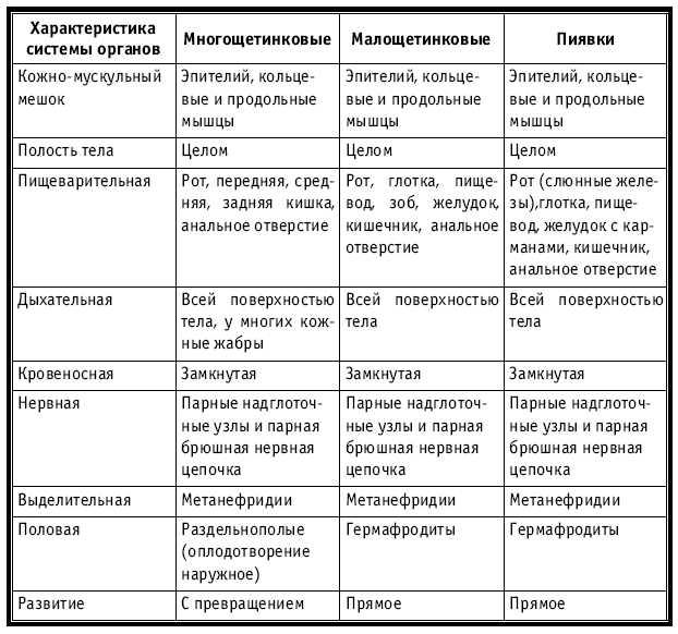 8 класс характеристика хорошо знакомого человека